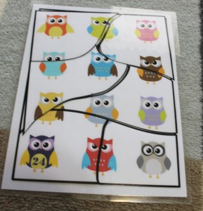 toddler-six-piece-puzzle-owls-completed